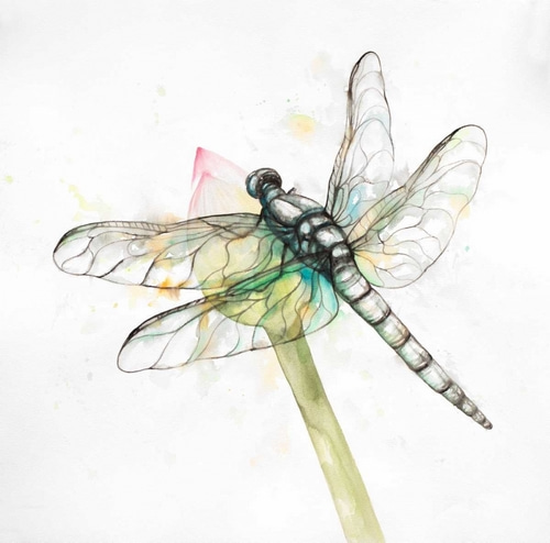 Atelier B Art Studio 아티스트의 Dragonfly on a Flower Bud 작품