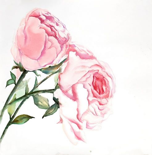 Atelier B Art Studio 아티스트의 Watercolor Pink Roses 작품
