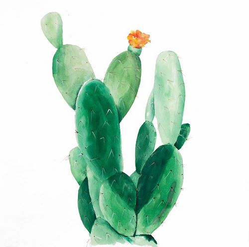 Atelier B Art Studio 아티스트의 Watercolor Paddle Cactus with Flower 작품