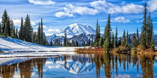 Broom, Michael 아티스트의 Mt. Rainier Vista 작품