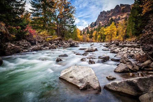 Broom, Michael 아티스트의 Teton River Rush 작품