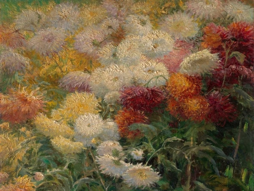 Caillebotte, Gustave 아티스트의 Chrysanthemums in the Garden at Petit-Gennevilliers 작품