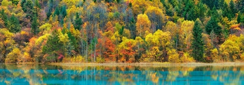 Krahmer, Frank 아티스트의 Lake and forest in autumn, China 작품